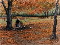 The Bird Lady, a painting by artist Janet Kruskamp, personally enhancing and signing giclees  of her famous paintings.