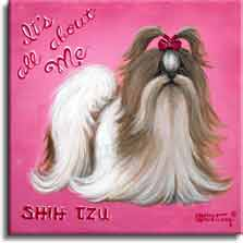 It's All About Me, a poster style painting from painter Janet Kruskamp. A bright pink background helps this long haired Shih Tzu stand out. White and dark brown with the hair on the top in a red bow, this dog is impeccably groomed and ready for it's closeup. Script words It's All About Me sit at an angle in the upper left corner of this square painting, and the words SHIT TZU sit on the lower left. Another original acrylic painting for sale, directly from the artist, Janet Kruskamp.